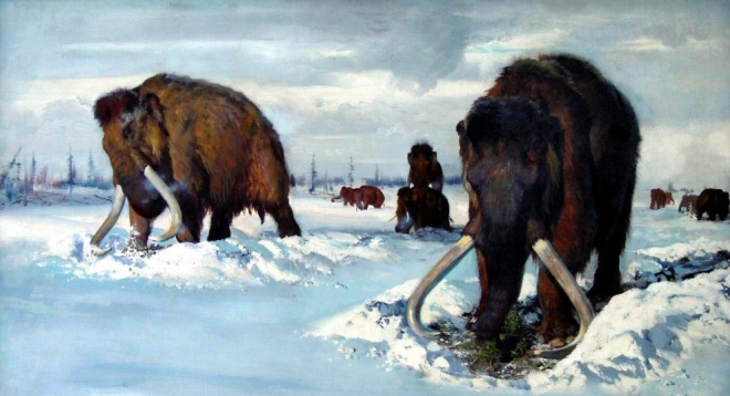 Ученые России решили клонировать мамонтов
