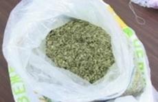 Житель Марий Эл заключен под стражу за перевозку наркотиков