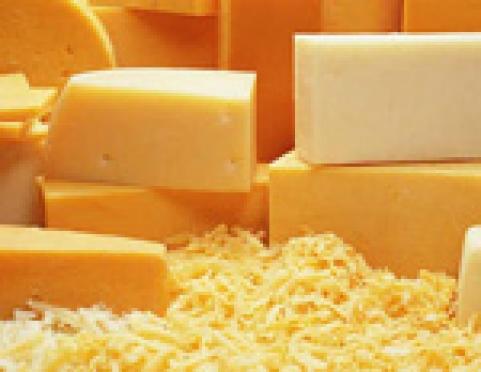 Эпидемиологи Марий Эл советуют воздержаться от дегустации французских сыров