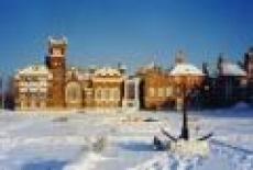 Замок Шереметьева «вспомнит» часть похищенных экспонатов