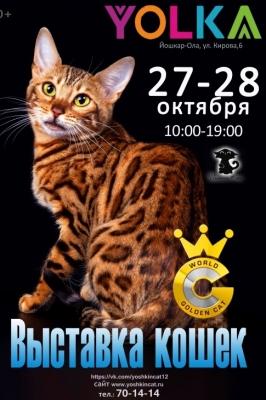 Золотая кошка Йошкар-Олы