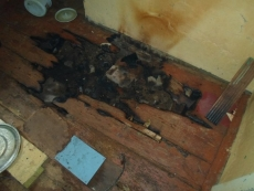 В Марий Эл на пожаре погиб мужчина
