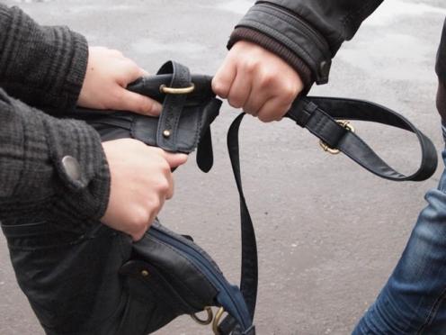 В Йошкар-Оле задержали молодых людей, подозреваемых в ограблении 60-летней женщины