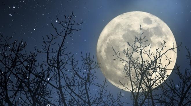 31 января астрономы обещают суперлуние