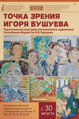 Точка зрения Игоря Бушуева постер