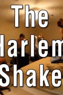 Harlem Shake в Йошкар-Оле постер