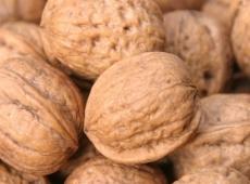 Житель Удмуртии вел наркобизнес в Марий Эл, используя грецкие орехи