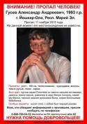 Добровольцы Йошкар-Олы продолжают поиск, пропавшего 22-летнего парня