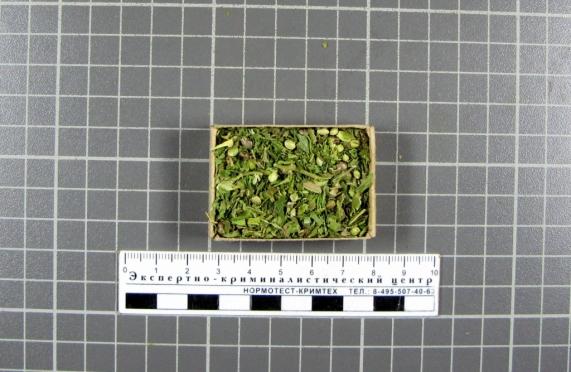 В Марий Эл задержали сержанта-контрактника с марихуаной