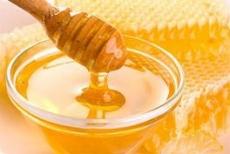 Жители Марий Эл продегустируют местный мед