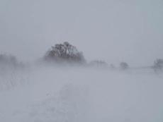 В Марий Эл прогнозируют аномально холодную погоду