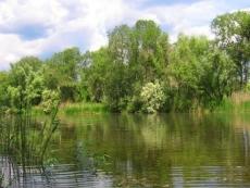 Эпидемиологи Марий Эл запретили купаться в открытых водоемах