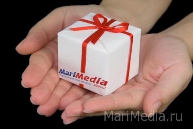Портал MariMedia.ru в цифрах и фактах