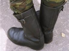 Студентам разрешат совмещать обучение со службой в армии