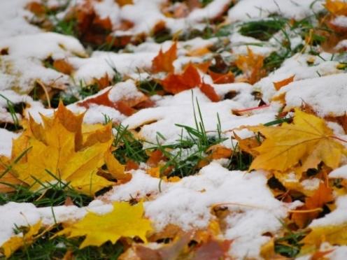 В Марий Эл холодная погода продержится до середины недели