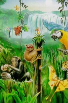 Мадагаскар постер