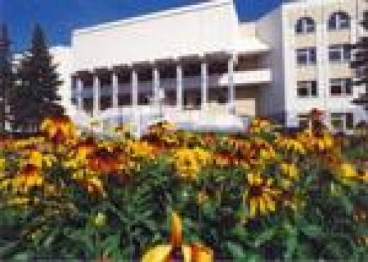 Центр Йошкар-Олы этим летом обустроят навесными клумбами