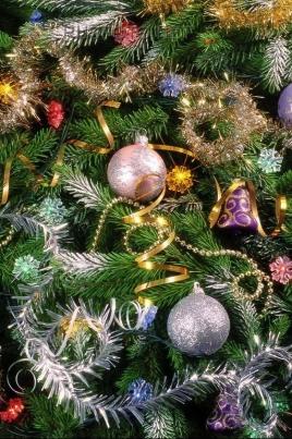 Рождественские чудеса постер
