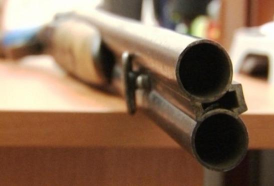 Полицейские Марий Эл изъяли обрезы охотничьих ружей
