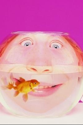 Новогодняя смехотерапия постер