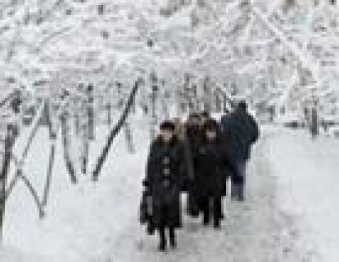 Спасатели Марий Эл обеспокоены погодными условиями