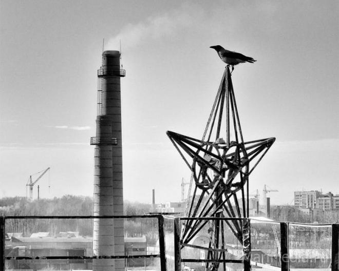 Новая фотовыставка на портале MariMedia.ru