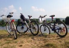 Полицейские установили личности велосипедных воров