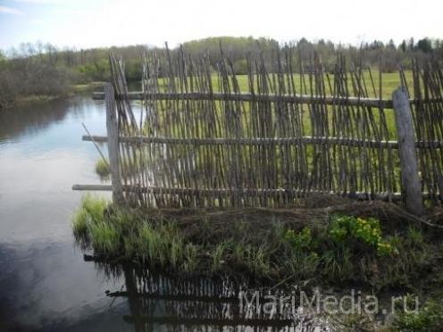 Реки и озера Марий Эл назвали самыми грязными в Приволжье