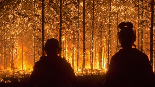 В Приамурье ведутся поиски пропавшего пожарного из Марий Эл