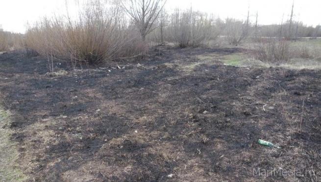 В Марий Эл оштрафованы 7 человек за пал сухой травы