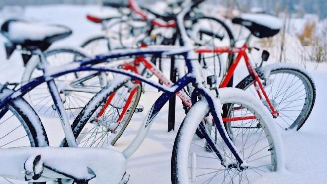 Велосипедисты готовятся к спортивному ориентированию на двухколёсных