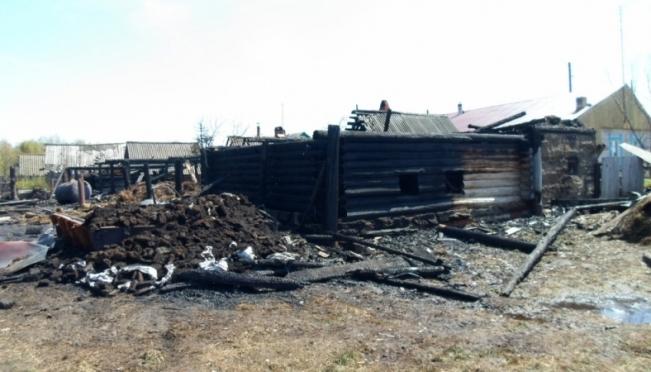 По вине школьника сгорели надворные постройки и погиб домашний скот
