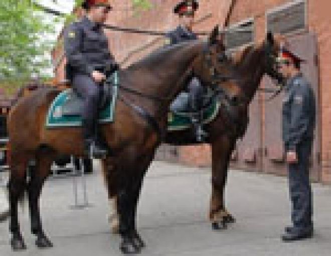 В Марий Эл разговоры о введении подразделения конной милиции становятся все более основательными