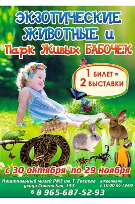 Экзотические животные и Парк живых бабочек постер