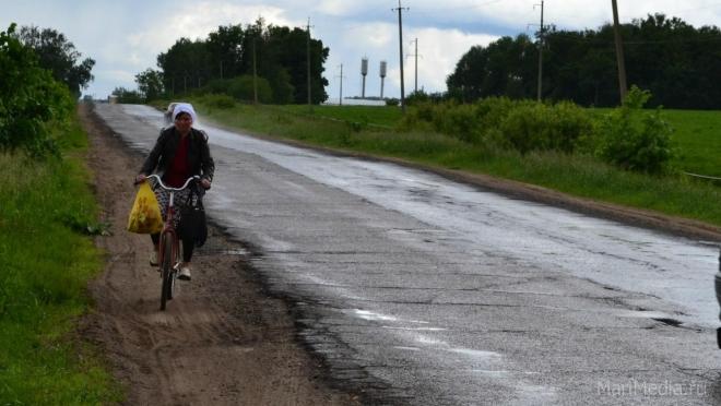 Жительница деревни лишилась средства передвижения