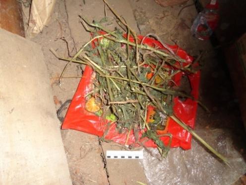 В посёлке Советский изъяли крупную партию наркотика