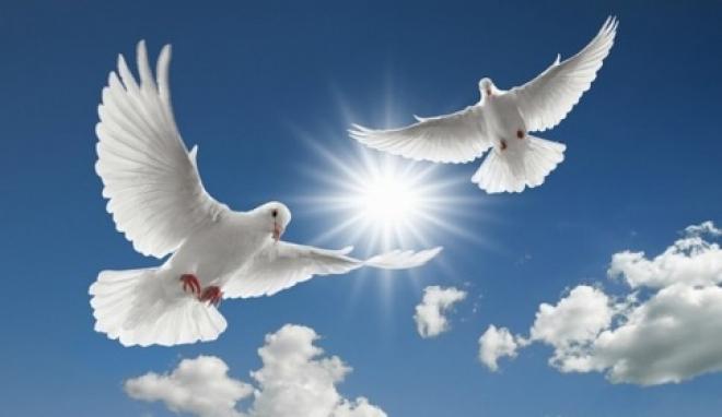 В небо Йошкар-Олы взмоют белые голуби