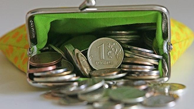 Зарплата работников в сфере образования в 1,8 раза ниже среднемесячной зарплаты по Марий Эл