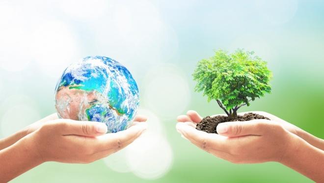 В Марий Эл стартует национальный проект «Экология»