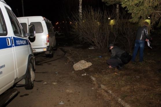 Следователи Марий Эл: найденную пожилую женщину заживо загрызли собаки