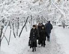 Синоптики Марий Эл прогнозируют резкое похолодание