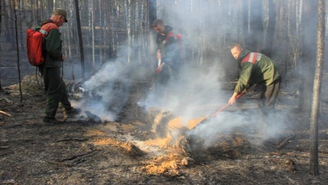 В Марий Эл официально начался пожароопасный сезон