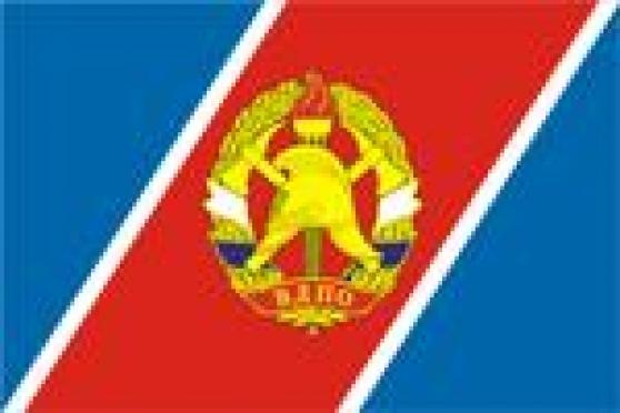 Ветеранов ВДПО развлекала бригада юных пожарных
