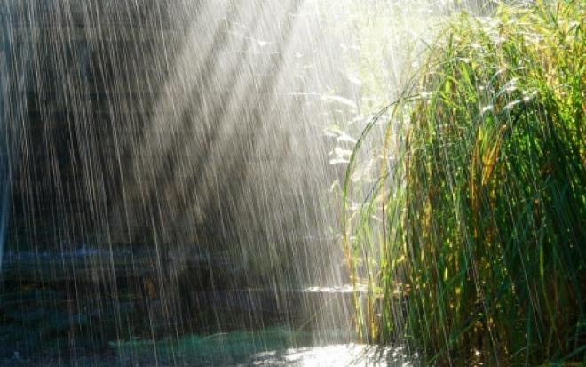 В выходные в Марий Эл будет тепло, но дождливо