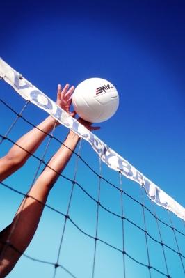 XXIV Турнир по волейболу. Женские команды