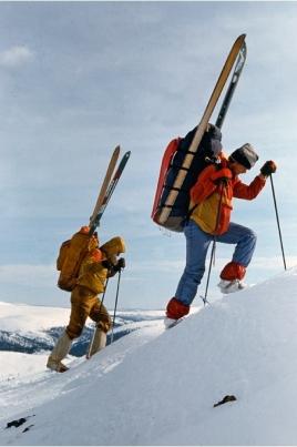 Открытый Чемпионат и первенство Республики Марий Эл по спортивному ориентированию на лыжах постер