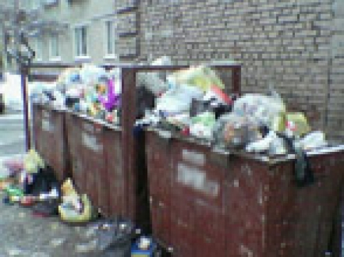 В рождественские каникулы эпидемиологи Марий Эл занимались переполненными контейнерами Йошкар-Олы