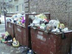 Коммунальщики столицы Марий Эл решили окончательно разобраться с мусором