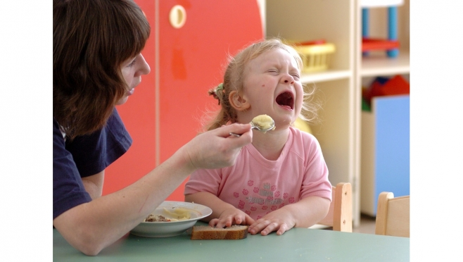 ОНФ в Марий Эл открывает горячую линию по питанию в детских садах