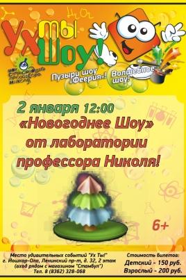 Новогоднее шоу постер